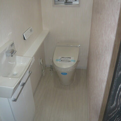 トイレ/タンクレストイレ/カウンター付手洗い/白でまとめたトイレ/アクセント壁があるトイレ/舞鶴新築/... トイレ。 タンクレストイレとカウンター付…