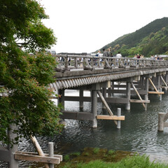 渡月橋/嵐山/令和元年フォト投稿キャンペーン 渡月橋