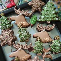 手作りクッキー/クリスマス/アイシングクッキー/クリスマス2019/リミアの冬暮らし/ハンドメイド 今日のクッキーはトナカイとツリー 赤い長…