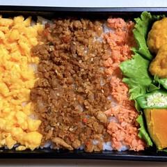 高校生男子弁当/三色弁当/南瓜煮/おくら/チキンナゲット 高校生男子弁当。 いつかのお弁当。 久し…(1枚目)