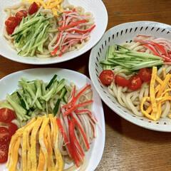 夏/麺/おうちごはん 昨日のお昼ご飯。 うどんで冷やし中華。 …