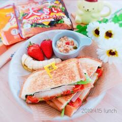 おうちカフェ/おうちランチ/おうちLunch/大きいスライスチーズ/ホットサンド/お昼ごはん/... 4/15 お昼ごはん   大きなスライス…