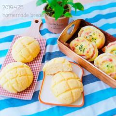 パン活/ハムチーズパン/メロンパン/手作りパン/パン作り/おやつタイム/... . . 4/25(木) #パン活 . .…