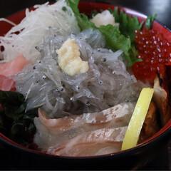 わたしのGW 友達と、娘と3人で、淡路島に生しらす丼を…(2枚目)