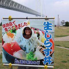 わたしのGW 友達と、娘と3人で、淡路島に生しらす丼を…(1枚目)
