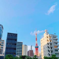 お仕事/令和の一枚/風景/暮らし いい天気〜( ˊ̱˂˃ˋ̱ )☀︎