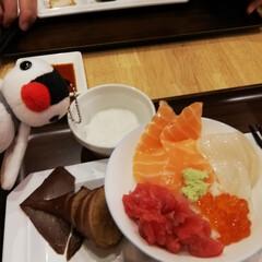 ご飯 函館にて海鮮丼♪ ご飯最高!!