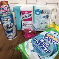 スクラビングバブル トイレ洗剤 流せるトイレブラシ 付替用72個セット(トイレ洗剤)を使ったクチコミ「お掃除用品はエリアごとにまとめて買う派で…」