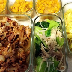 iwaki イワキ パック&レンジ システムセット グリーン PSC-PRN-G7(食品保存容器)を使ったクチコミ「【イワキ パック&レンジ】  作り置きに…」