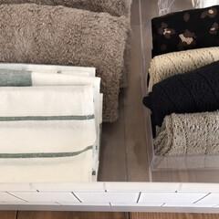 IKEA ELLY 20277766 キッチンクロス ホワイト グリーン 50x65cm 4 ピース   イケア(ホワイトボード)を使ったクチコミ「【靴下収納】  セリアのクリアケースは衣…」