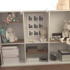 片付け/子供部屋収納/100均/簡単/ぬいぐるみ収納/ぬいぐるみ 【ぬいぐるみ収納】  棚をおもちゃ置き場…