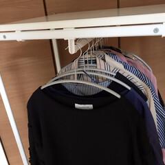 MAWAハンガー マワハンガー 人体ハンガー 10本組 シルバー(物干しハンガー、ピンチ)を使ったクチコミ「手持ちのお洋服の形に合わせて、形が丸く落…」
