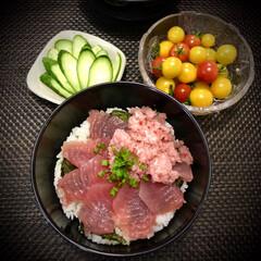 マグロネギトロ丼/ネギトロ丼/丼/マグロ丼/おうちご飯/料理/... 今日の晩ご飯 は、 ✴︎マグロネギ…