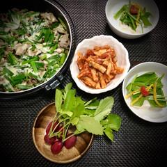 今日の晩ご飯/料理/豚肉と小葱のチーズon/おうちごはん 今日の晩ご飯 は、 ✴︎豚肉と小葱炒めの…
