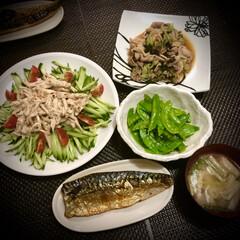 鯖の塩焼き/バンバンジー/棒棒鶏/晩ご飯/料理/おうちごはん 昨日の晩ご飯 は、 ✴︎棒棒鶏 ✴︎鯖…