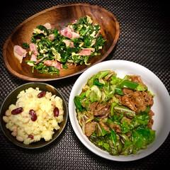小学生料理/ほうれん草とベーコンの炒め物/ポテトサラダ/回鍋肉/今日の晩ご飯/料理/... 今日の晩ご飯 は、 回鍋肉✴︎ ◆回鍋肉…