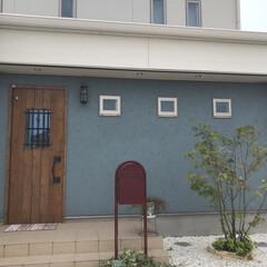 フォロー大歓迎/LIMIAペット同好会/DIY/風景/暮らし/住まい/... ブルーグレイの塗り壁は 完済するまで不安…