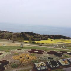 淡路島/春のフォト投稿キャンペーン/GW/おでかけ/風景 きれいな風景!海が背景だとより綺麗に映え…