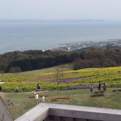 淡路島/春のフォト投稿キャンペーン/GW/至福のひととき/おでかけ/風景 一番上のデッキから見る景色⭐️天気が良か…