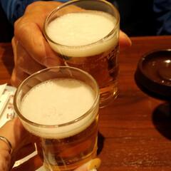 ハイボール/瓶ビール/つくね/焼き鳥/難波 焼き鳥 正起屋さん しそ巻きつくねも手羽…