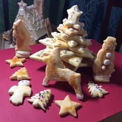 こんがりグルメ クリスマスクッキー