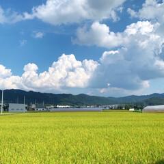 雨雲/そら/青い空と白い雲/LIMIAファンクラブ/秋空/フォロー大歓迎 今日の秋空♪