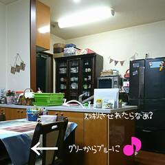 笑顔^^;💦/何かいい物無いかな?/キッチン 我が家のkitchenスペースは今の㍇…(2枚目)