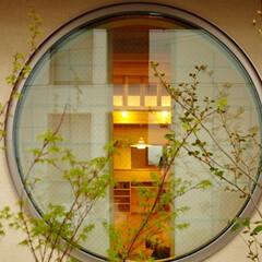 住まい/建築/建築士/建築家/設計士/設計事務所/... 十分な庭を確保出来ない都心の住宅地。 視…