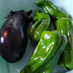 今晩のおかず/野菜/家庭菜園/節約 朝とれ野菜❤️ 雨で土まみれでしたが、大…