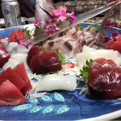 刺身/お造り/鯛/フォロー大歓迎/おうちごはんクラブ こちらも父のお料理!鯛のお造りです。子供…(3枚目)