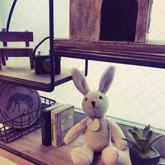 ぬいぐるみ/コレクション/ウサギ/雑貨/フォロー大歓迎 私のウサギちゃんコレクションの1つ!小さ…