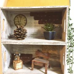 ディスプレイラック/ディスプレイボックス/ミニチュア雑貨/ダイソー/インテリア/DIY/... ダイソーの木箱を重ねてボンドで接着しただ…