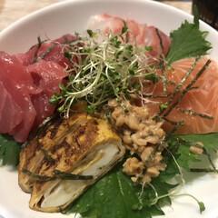夕飯/サーモン/鯛/マグロ/海鮮丼 このところハンドメイドしていないので、食…