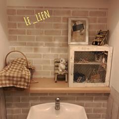 インテリアシート/キャビネット風/トイレインテリア/インテリア/トイレ/DIY/... 我が家のトイレ。夫作のチキンネットキャビ…