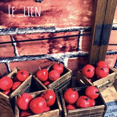 紙粘土/りんご/ミニチュア雑貨/100均/キャンドゥ/インテリア/... 以前、クリスマス前に紙粘土で小さなりんご…