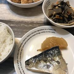 ひじきの煮物/鯖の煮付け/夕飯/夕飯のおかず/おうちごはん 今日はまたまた元板前の父が、サバの煮付け…