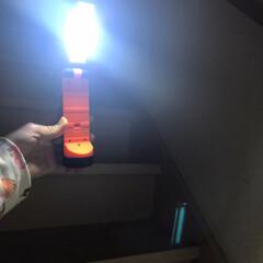 停電対策/台風対策/台風/LEDワークライト/懐中電灯/暮らし/... 今日買ったLEDワークライトをためしにつ…