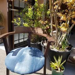 DIY/アップサイクル/リメイク/デニム/椅子 /キュリアスマインズ ぼろぼろで捨てようかと思っていた椅子。 …
