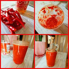 赤い/辛いもの好き/辛い/唐辛子/ご飯/DIY/... 赤唐辛子と酢 唐揚げや焼魚に