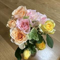 パルシステム/花宅配/癒し/花 お花も宅配で届くんですね💐 これはパルシ…(2枚目)