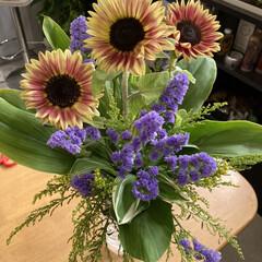 生け花 今日はお花屋さんに近所の奥様方と行って生…