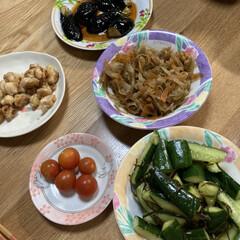 夕飯のおかず/夏野菜 せっかく採ってきた野菜、茄子🍆の揚げ煮に…(1枚目)
