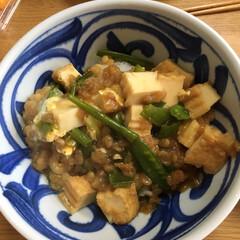 お昼ごはん 絹さやと細ネギと厚揚げと揚げ玉で簡単丼 …