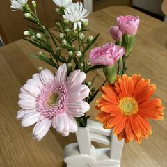 一輪挿し/お花 パルシステムで注文したお花💐 思ってた以…