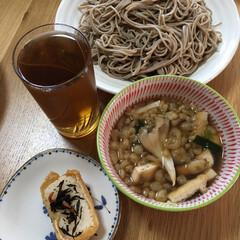 お昼ごはん うちのお昼ご飯 暑いからさっぱりお蕎麦 …