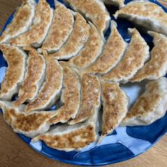 餃子/晩ご飯 昨日の晩ご飯は餃子🥟 結構美味しくできま…(1枚目)