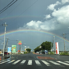 自然 偶然信号待ちしていた時に、虹🌈が2つ見え…