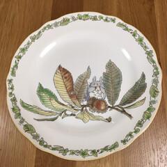 お気に入り お気に入りのトトロの大きなお皿です。