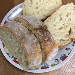 手作りパン またハード系のパン焼いてみました。冷蔵庫…
