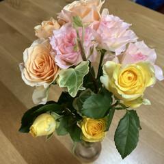 パルシステム/花宅配/癒し/花 お花も宅配で届くんですね💐 これはパルシ…(1枚目)